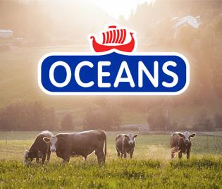 OCEANS奶酪品牌包装设计